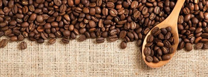 Sachets pour café